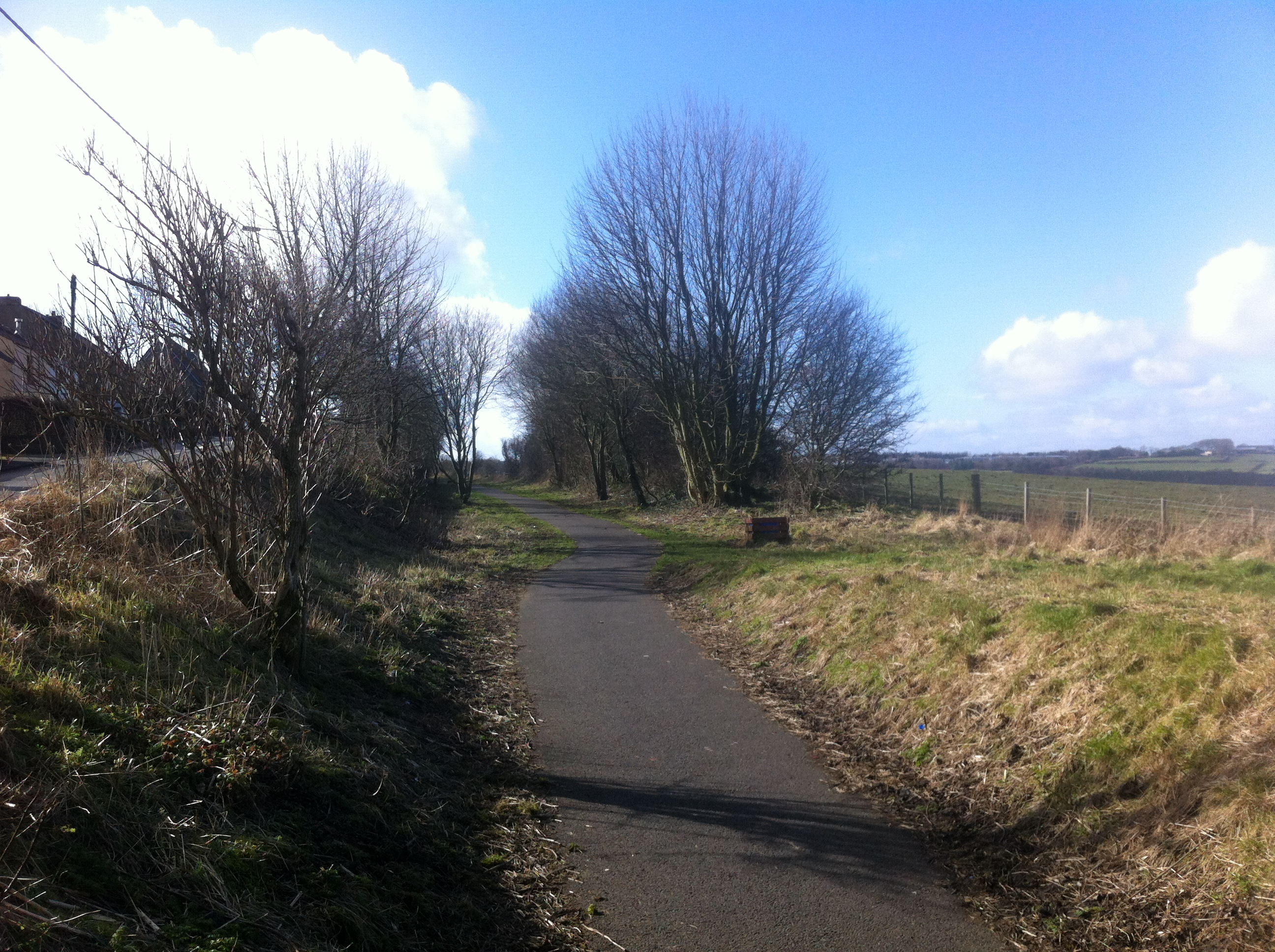 Remains of trackbed at Leadgate (27 February 2014)