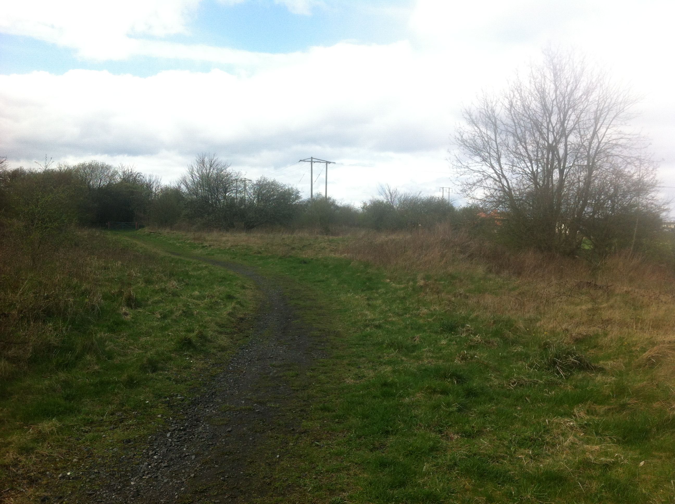 Site of Pelton Goods Yard