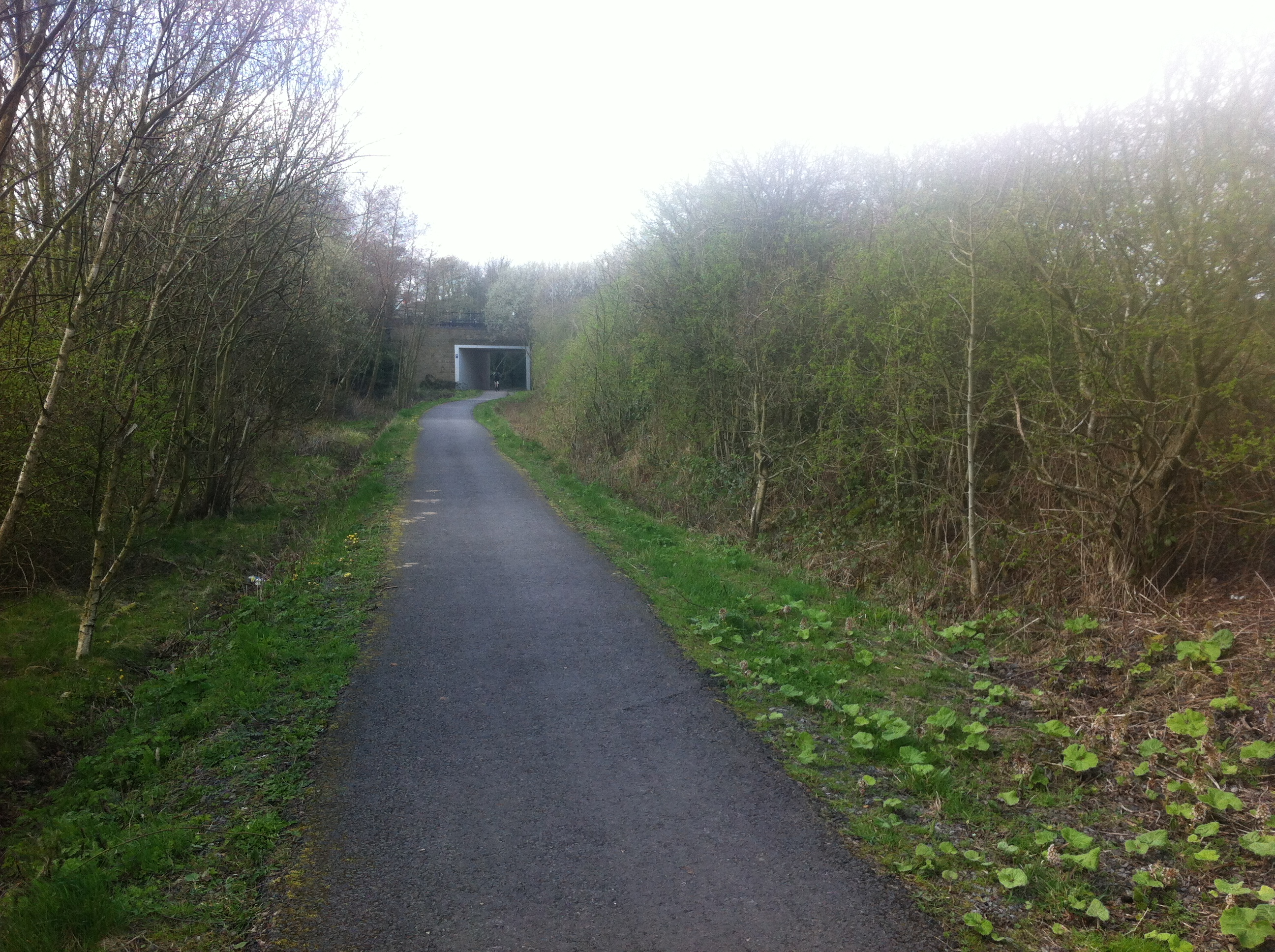 Site of Pelton Railway Station