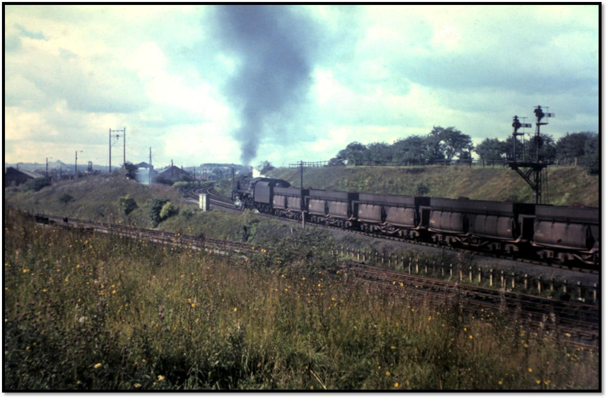 The 9F's allocated to Tyne Dock (92060-66, 92097-99) spent all their working lives at the shed, with the exception of 92065 which was transferred to Wakefield when the shed closed