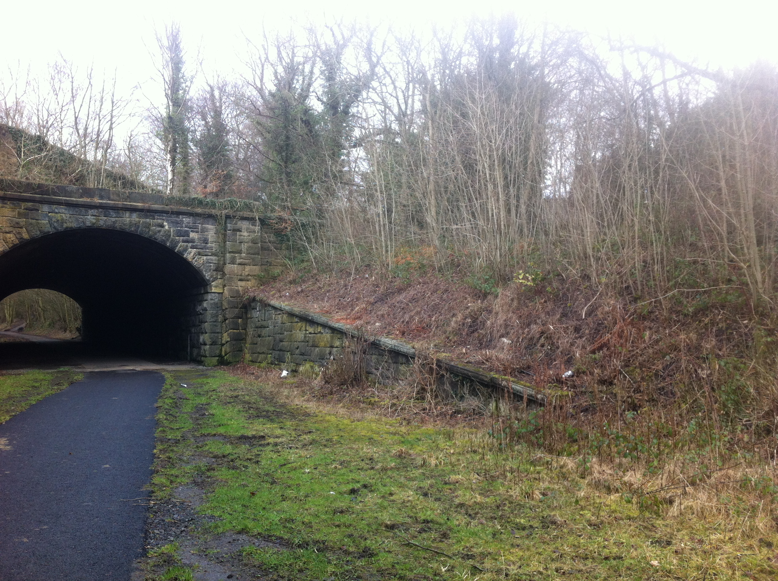 Tunnel at Beamish Station 2