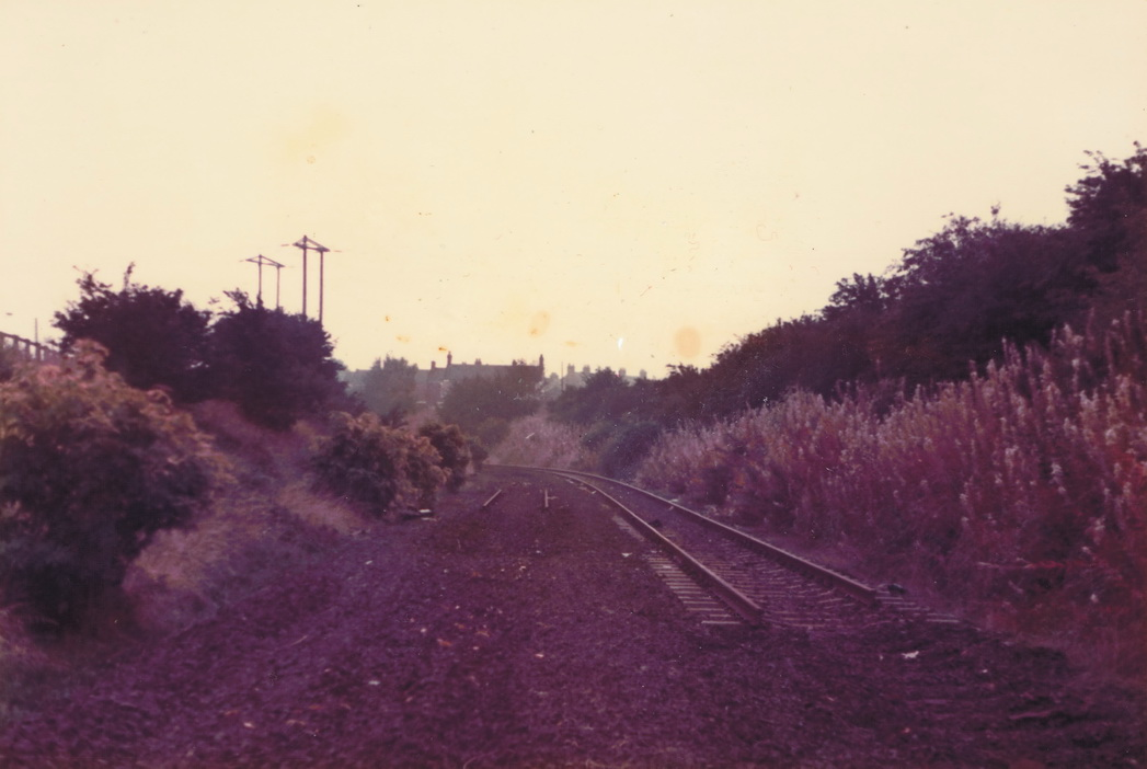 Looking towards the site of Pelton Station (out of site round the corner) on 6 October 1985. Photo Authors Collection