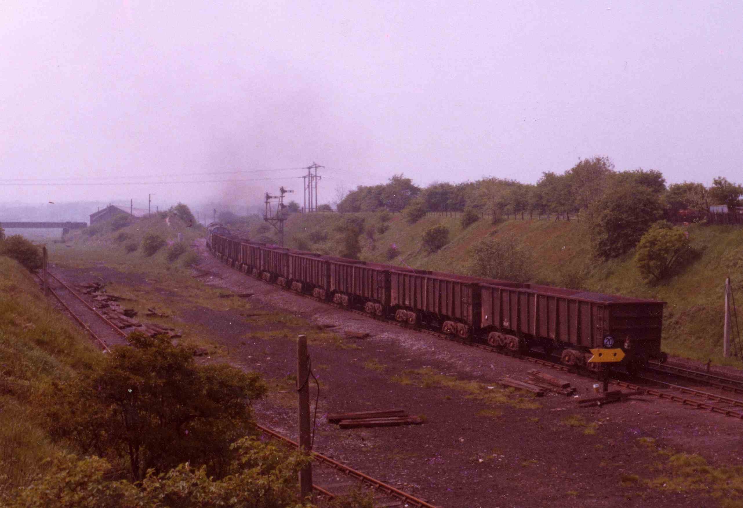 South_Pelaw_An_ore_train_passes_the_remains_of_Pelton_Lev
