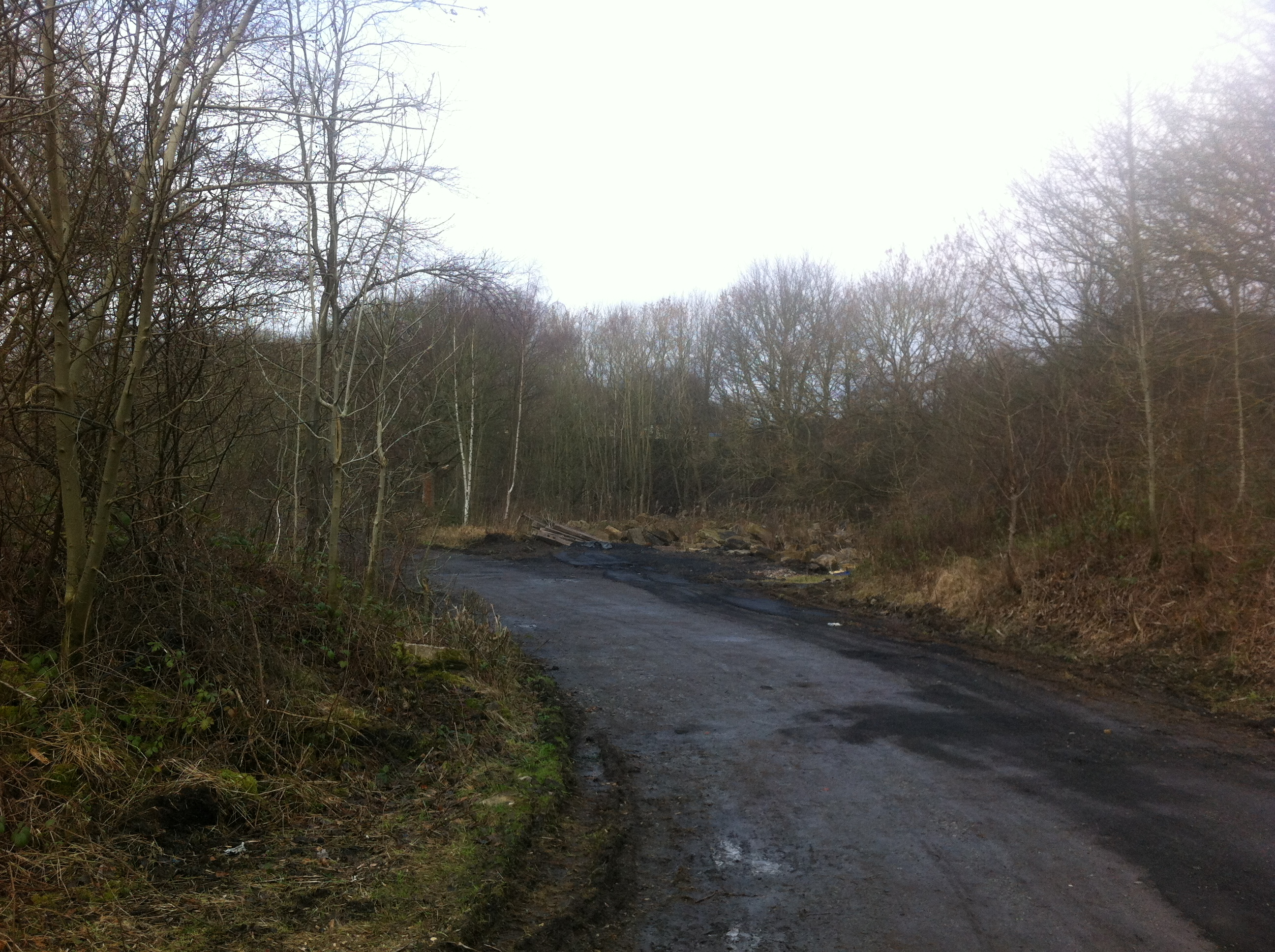 Overall view of site of Beamish Goods Yard