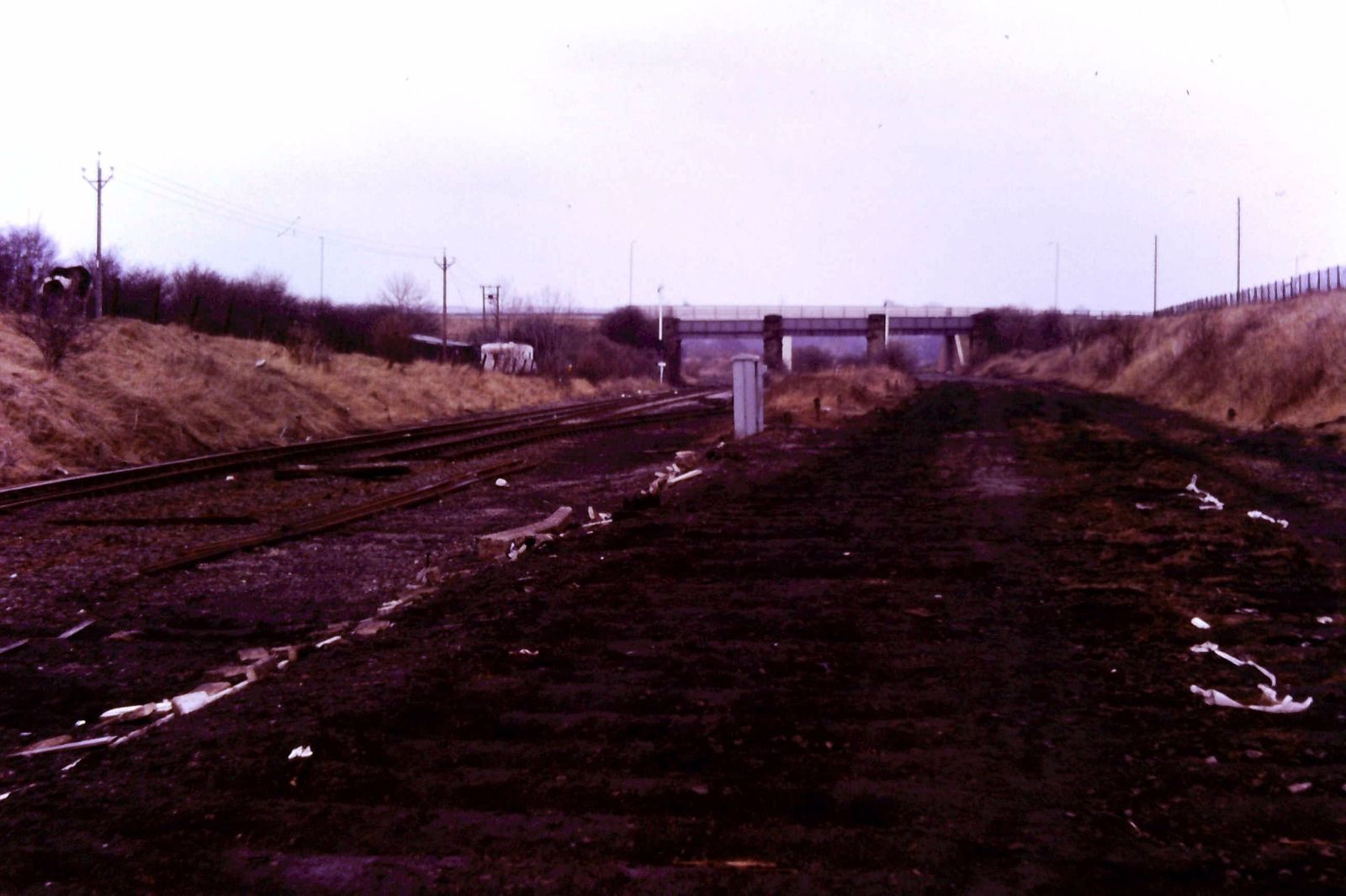 South Pelaw Junction 1 March 84