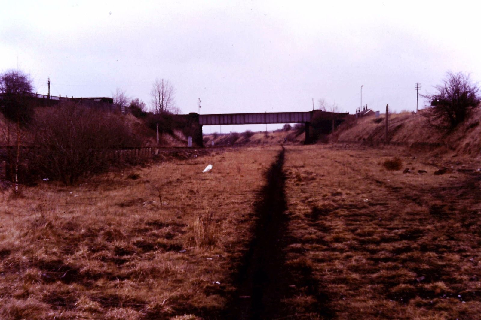 South Pelaw Junction March 84
