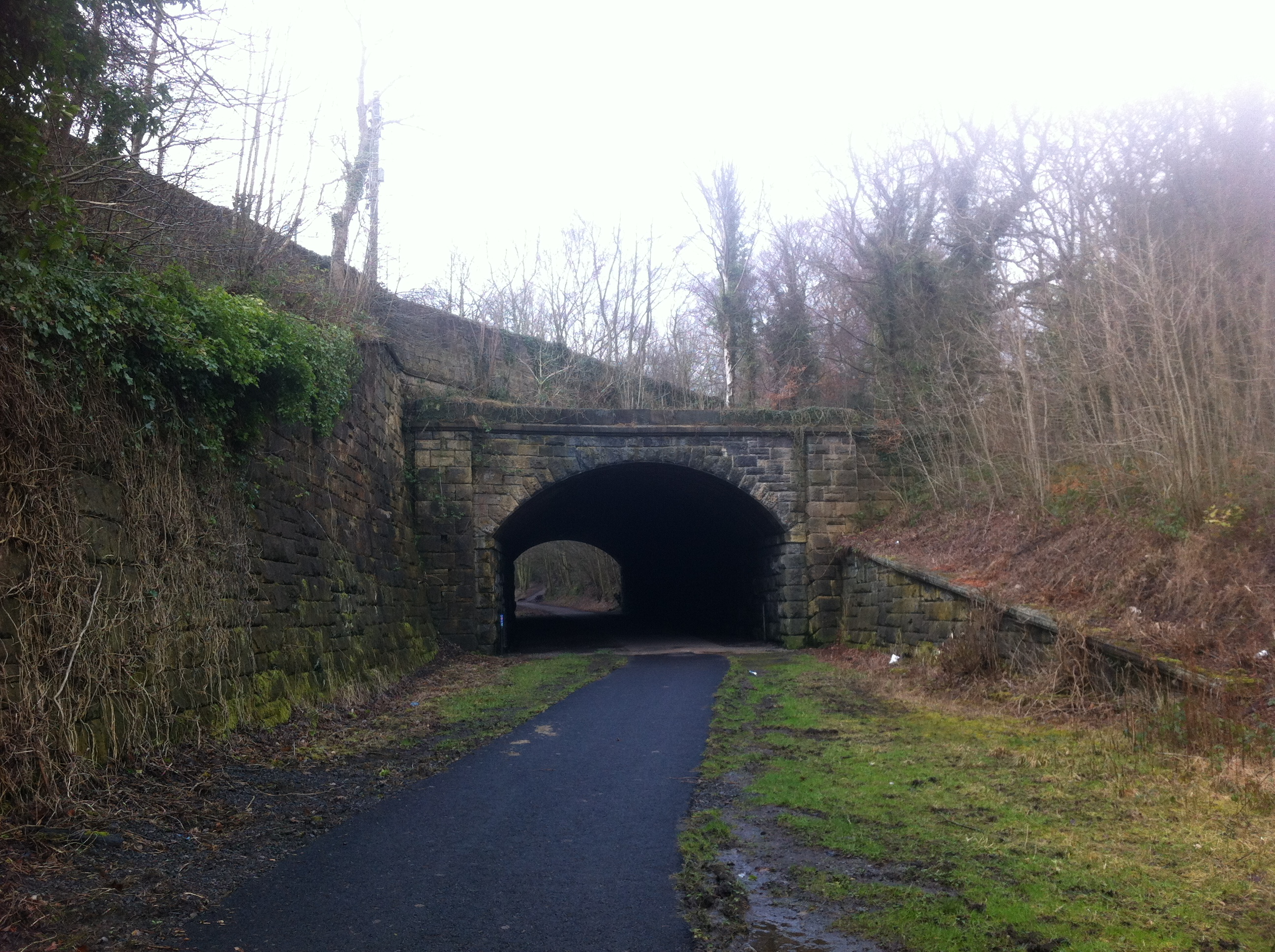 Tunnel at Beamish Station 1