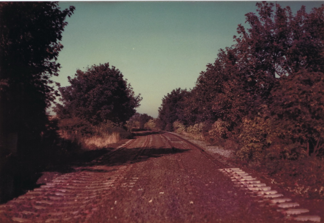 Looking down the track bed towards Pelton on 6 October 1985. Photo Authors Collection