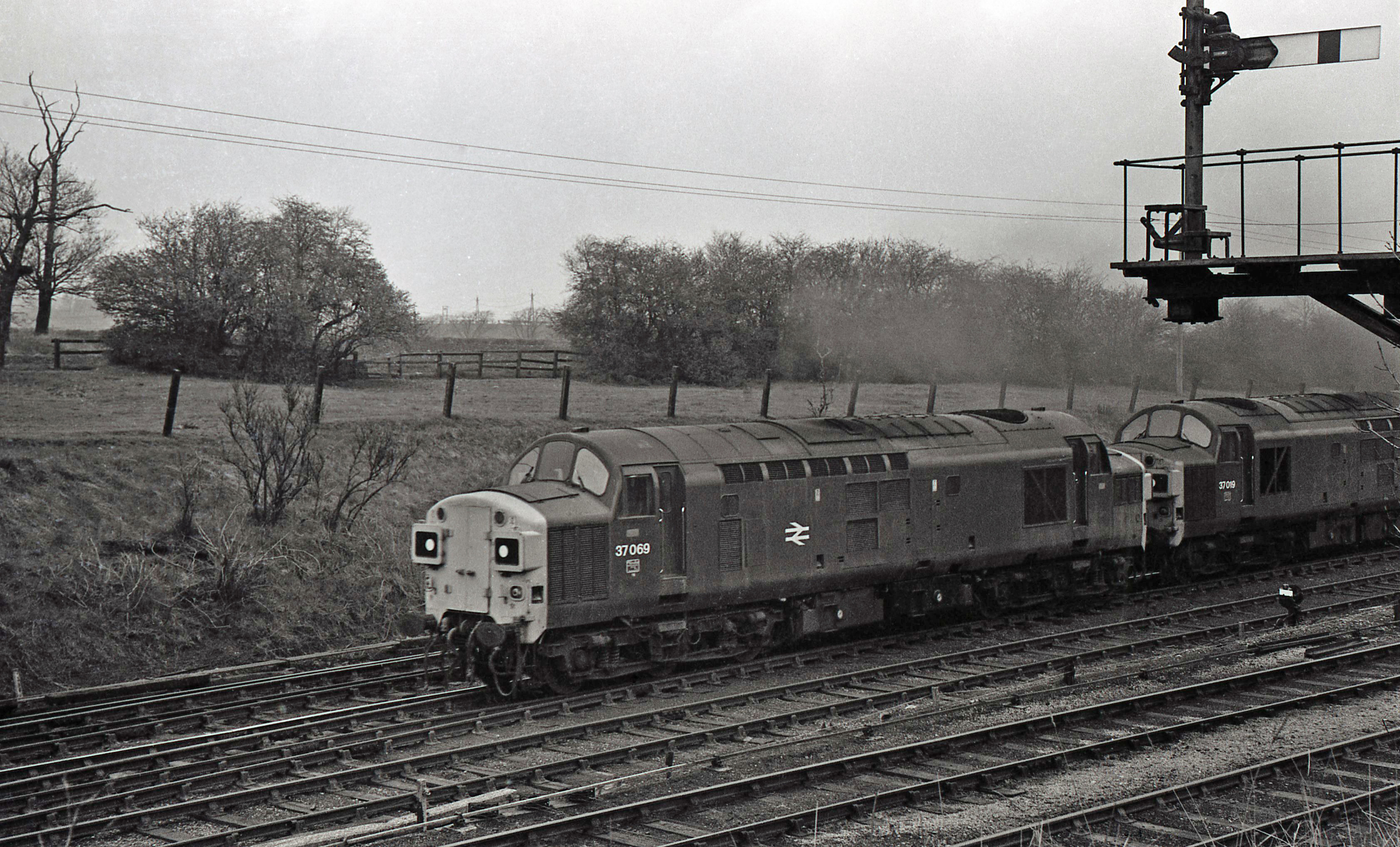 37069 and 37019 at South Pelaw Junction