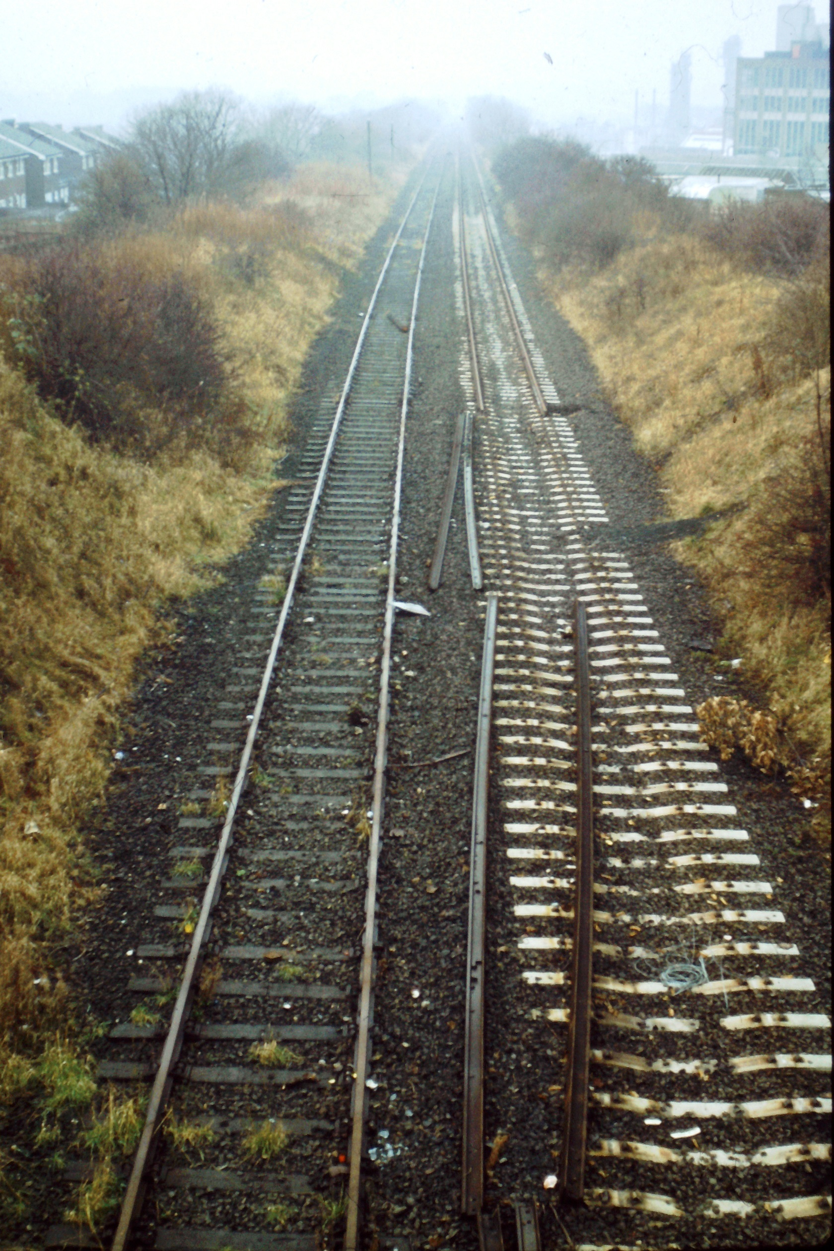 This vertical format view taken 4121982 shows the Washington - South Pelaw line at Picktree some 2 years after closure of Consett steel works